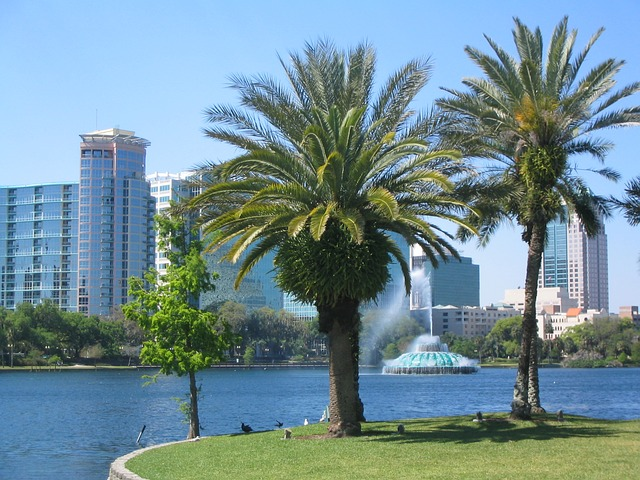 Hire a professional property management company to help you maximize your Orlando investment opportunities
